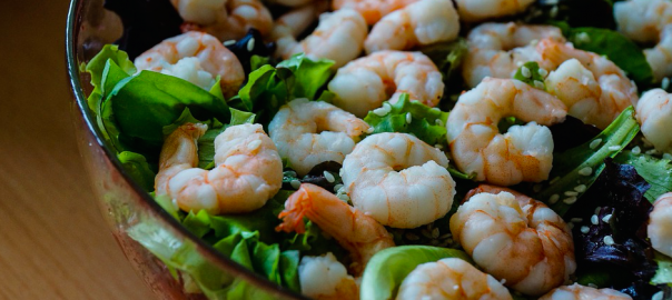 iodine-rich foods include shrimp